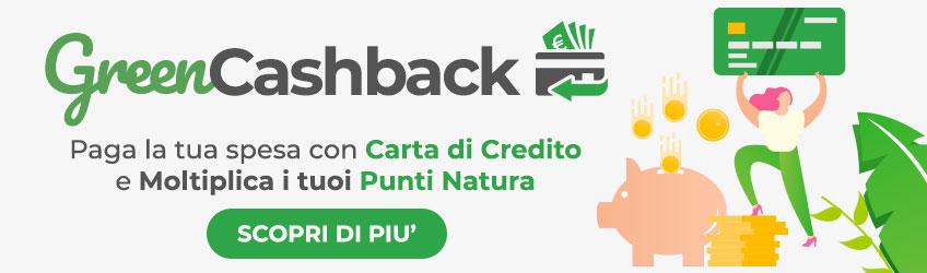 Green Cashback
