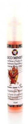 Essenza con Suoni per Meridiani - Fuoco Ministro 15 ml - Spray