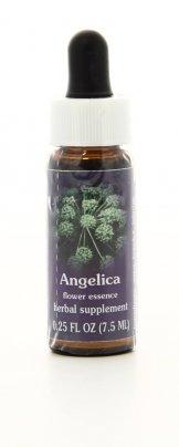 Angelica - Essenze Californiane