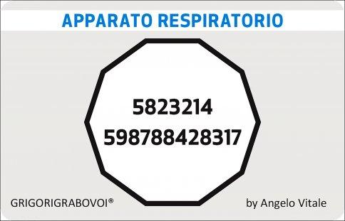 Tessera Radionica 54 - Apparato Respiratorio
