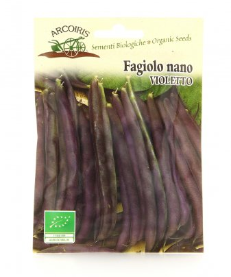 Bu079 Semi di Fagiolo Nano - Purple Queen - 30 Gr