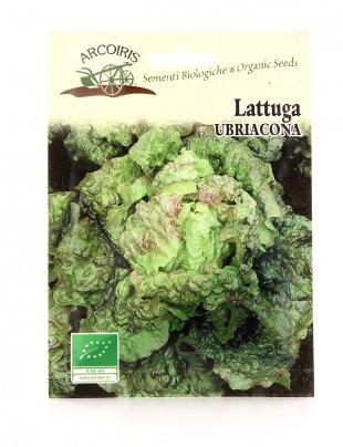 BU098 Semi di Lattuga Ubriacona - 3 Gr