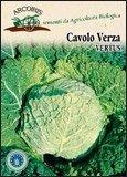 Semi di Cavolo Verza Vertus -  25 Gr.