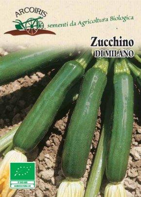 Semi di Zucchino di Milano