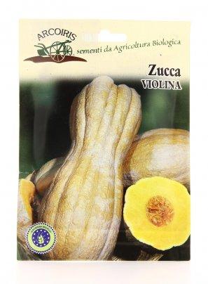 Semi di Zucca Violina - 4 Gr.