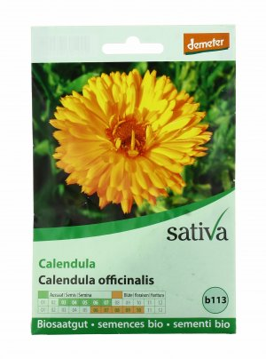 Calendula - B113
