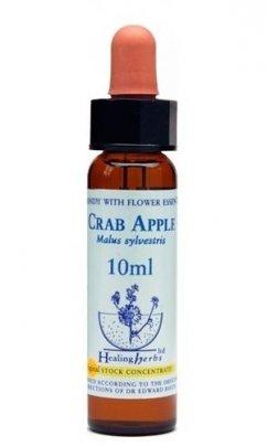 Crab Apple - Malus Sylvestris