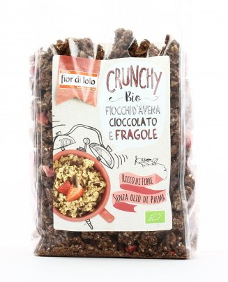 Crunchy con Fiocchi d'Avena, Cioccolato e Fragole Bio
