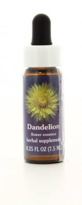Dandelion - Essenze Californiane
