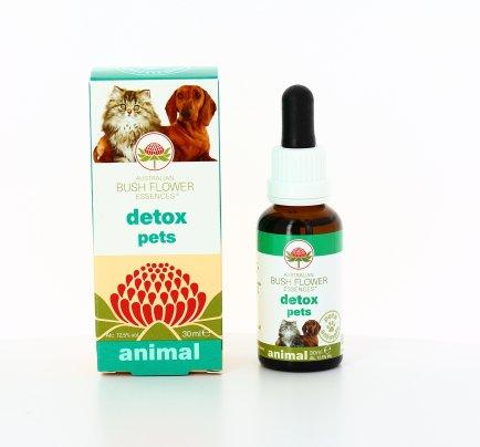 Detox Pets Animal