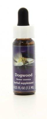 Dogwood - Essenze Californiane