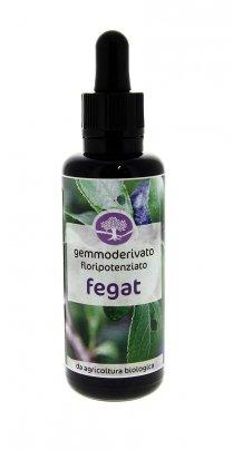 Gemmoderivato Floripotenziato - Fegat 50 ml