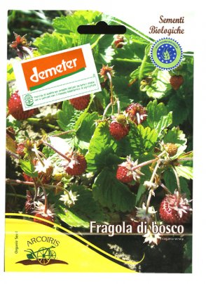 Semi di Fragola di Bosco - 2 Gr