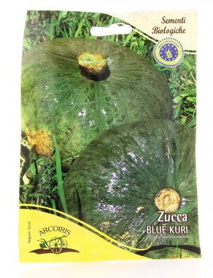 Semi di Zucca Blue Kuri - 25 Gr
