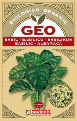 Germogli di Basilico 10 gr