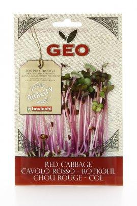 Germogli di Cavolo Rosso 12 gr