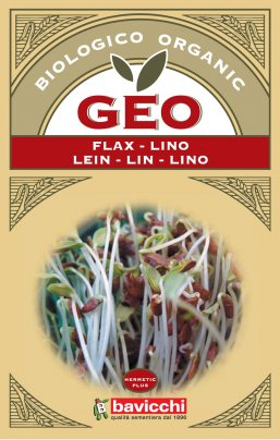 Germogli di Lino