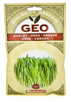 Germogli Orzo Bio 80 gr.