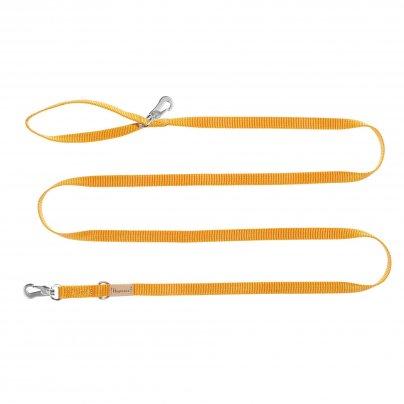 Guinzaglio Arancio 3 Metri x 20 mm.
