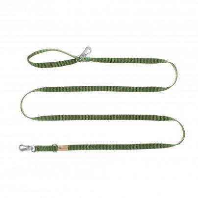 Guinzaglio Verde 3 Metri x 20 mm.