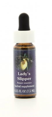 Lady's Slipper Essenze Californiane
