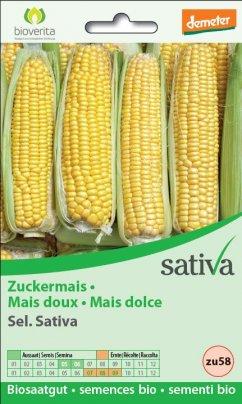 """Mais Dolce """"Damaun"""" Sel. Sativa - zu58"""