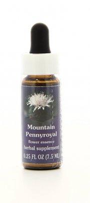 Mountain Pennyroyal Essenze Californiane