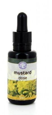 Mustard Dose