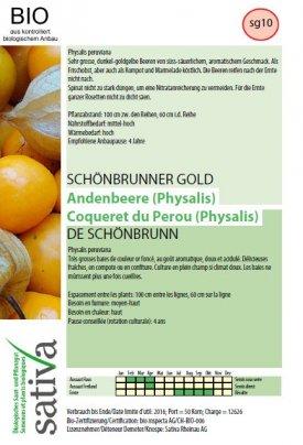 """Physalis """"di Schoenbrunn"""" - sg10"""