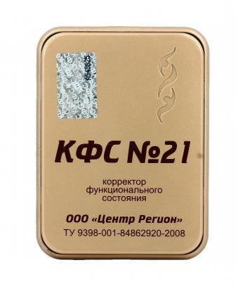 Piastra di Kolzov - N°21 - Purificazione Catene e Fatture e Ricarica (Serie Gold)