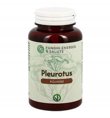 Pleurotus in Polvere