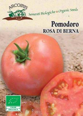 Semi di Pomodoro Rosa di Berna - 100 Semi