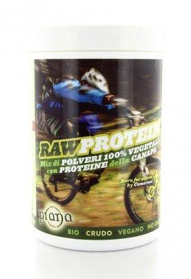 Raw Protein Bio - Mix di Polveri 100% Vegetali con Proteine della Canapa