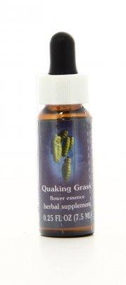 Quaking Grass Essenze Californiane