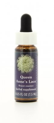 Queen Anne's Lace Essenze Californiane