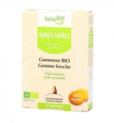 Gommose Bio con Ribes Nero