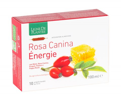 Rosa Canina Energy - 10 Ampolle