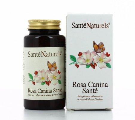 Rosa Canina Santè