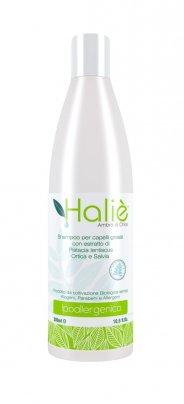 Shampoo per Capelli Grassi con Estratto di Pistacia Lentiscus