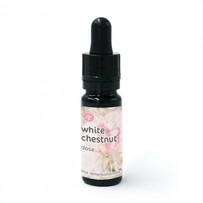 White Chestnut - Dose 10 ml