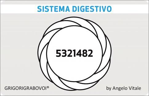 Tessera Radionica 56 - Sistema Digestivo