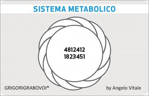 Tessera Radionca 41 - Sistema Metabolico