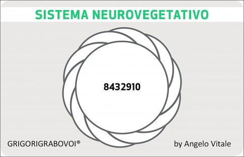 Tessera Radionica 67 - Sistema Neurovegetativo