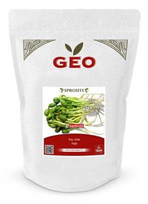 Germogli di Soia 500 gr.
