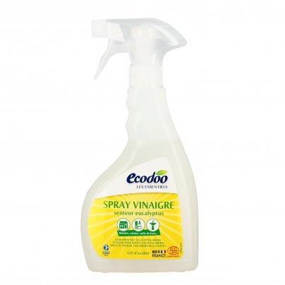 Spray Detergente all'Aceto con Eucalipto