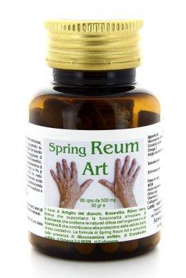 Spring Reum Art