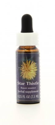 Star Thistle Essenze Californiane