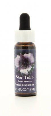 Star Tulip Essenze Californiane