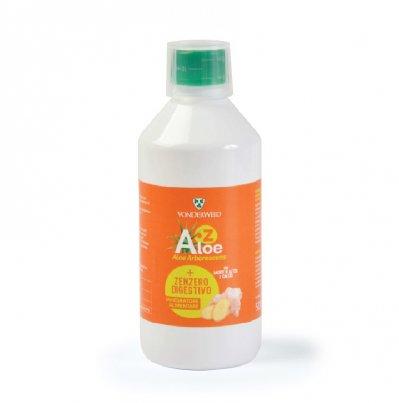 Succo Aloe e Zenzero