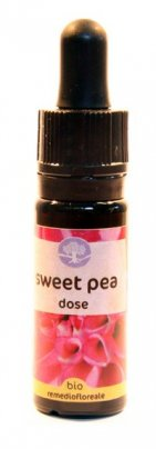Sweet Pea Dose - Californiano